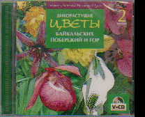 CD Дикорастущие цветы Байкальских побережий и гор. Фильм 2