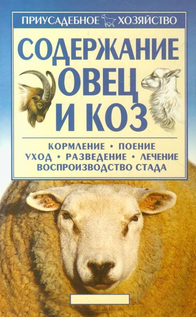 Уход и кормление овец в домашних условиях