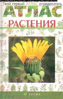 Твой первый атлас-определитель: Растения