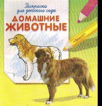 Раскраска Домашние животные: Раскраска для детского сада