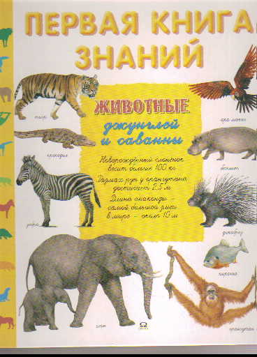 Животные джунглей и саванны