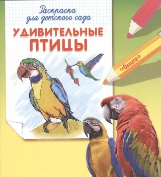 Раскраска для детского сада Удивительные птицы