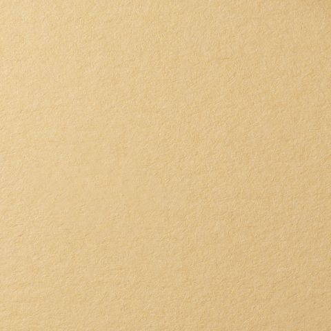 Бумага для пастели А4 160гр/м2 песочный