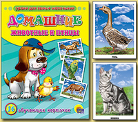 Домашние животные и птицы: 16 обучающих карточек