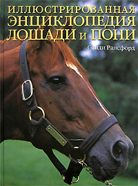 АКЦИЯ Лошади и пони