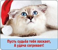 НГ Магнит 51.11.113 Пусть судьба тебя ласкает... винил, 7х6, кот