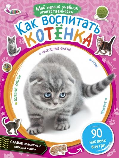 Как воспитать котенка: 90 наклеек внутри