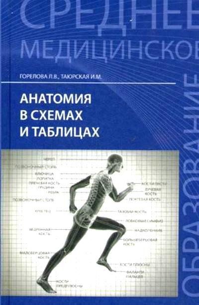 Анатомия в схемах и таблицах: Учеб. пособие