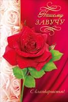 Открытка 41.146 Нашему завучу! сред конгр фольга роза