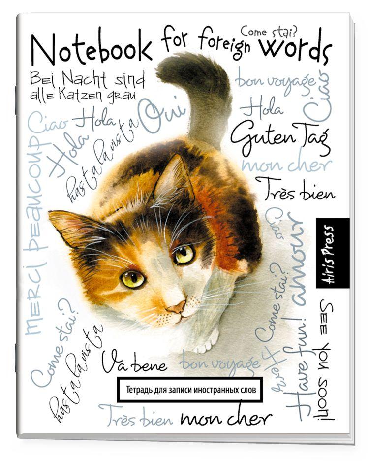 Тетрадь для записи иностранных слов (Любопытная кошка)