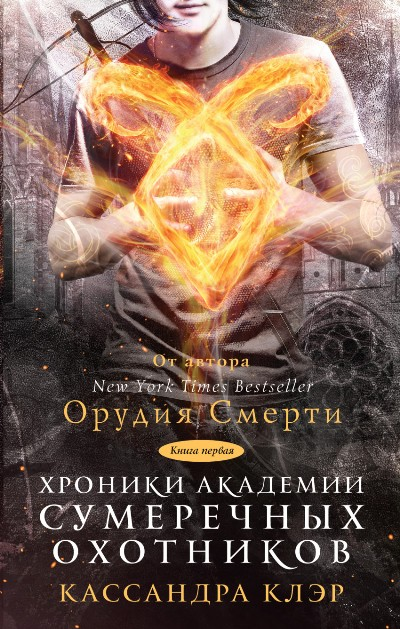 Хроники Академии Сумеречных охотников: Книга 1