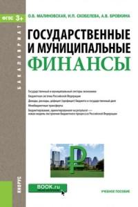 Государственные и муниципальные финансы: Учеб. пособие