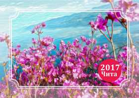 Календарь карманный 2017 Чита. Багульник