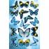 Наклейка ШН-009039 Бабочка