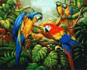 Рисование по номерам 40Х50 Попугай Ара