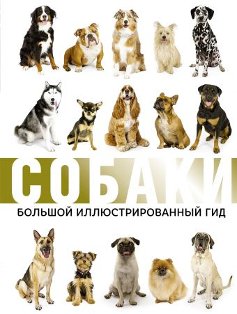 Собаки: Большой иллюстрированный гид
