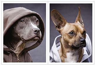 Блокнот А6 40л спир Dogs in da hood