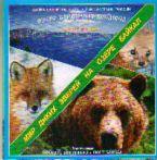 Карта: Озеро Байкал из космоса: Мир диких зверей на озере Байкал