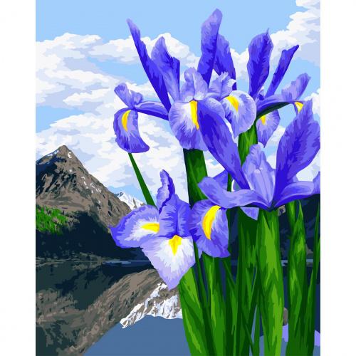 Творч Рисование по номерам 40Х50 Цветы весны