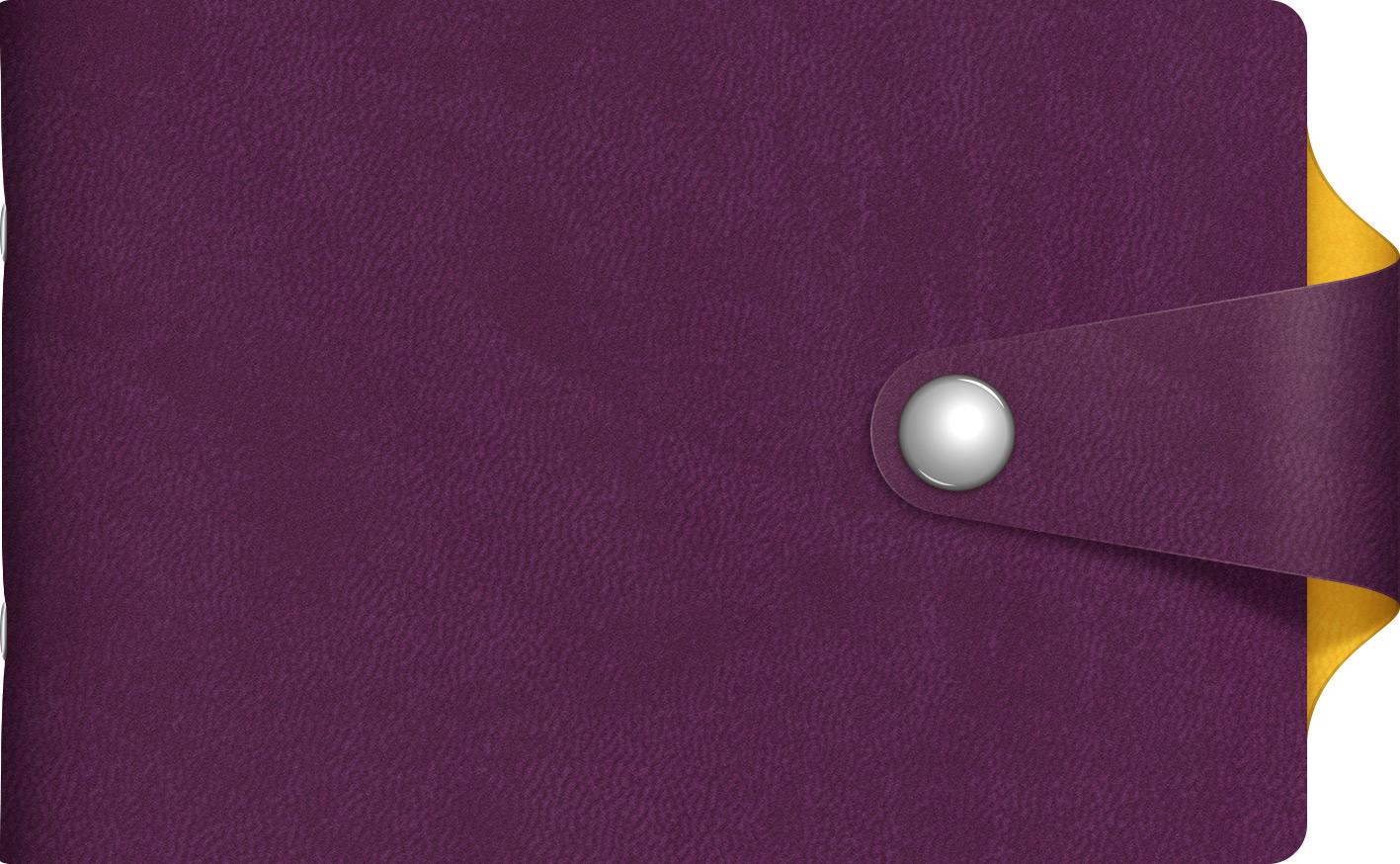 Визитница 12 карманов VIVELLA  BICOLOUR Фиолетовый/желтый хлястик с кн