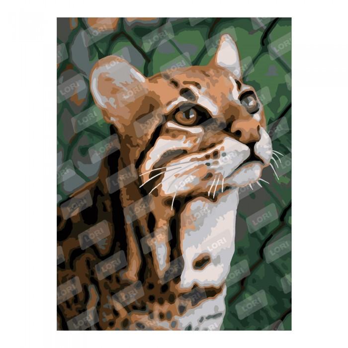 Творч Картина по номерам Дикая кошка