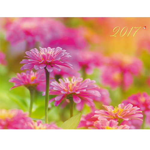 Календарь квартальный 2017 ККОБ 1709 Цветы. Очарование лета