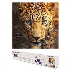 Творч Алмазная мозаика 30*30 Взгляд леопарда, холст