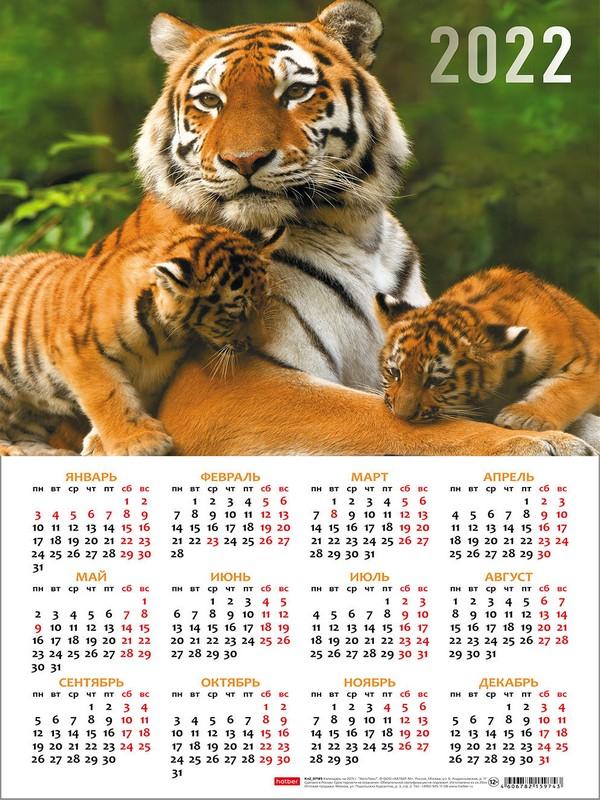 Календарь листовой 2022 Кл3_24613 Год Тигра