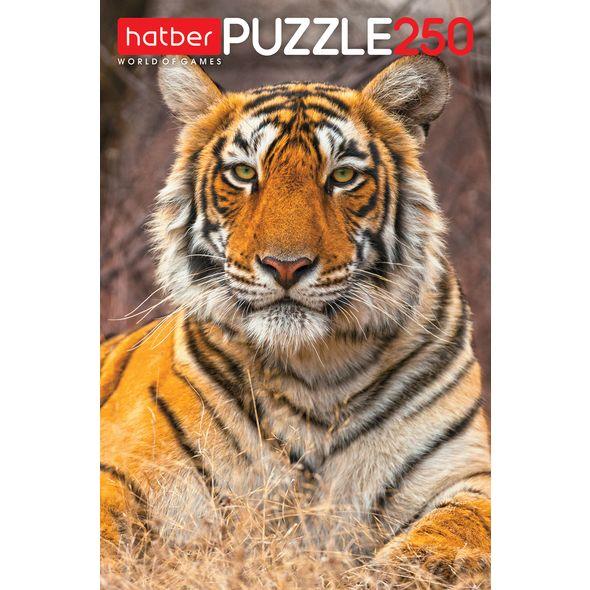 Пазл 250 Тигр