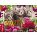 Пазл 108 Котята в корзинке