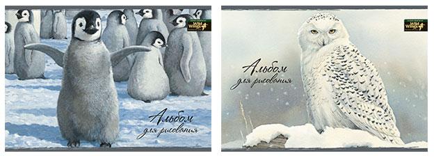 Альбом д/рис 40л Wild Wings склейка