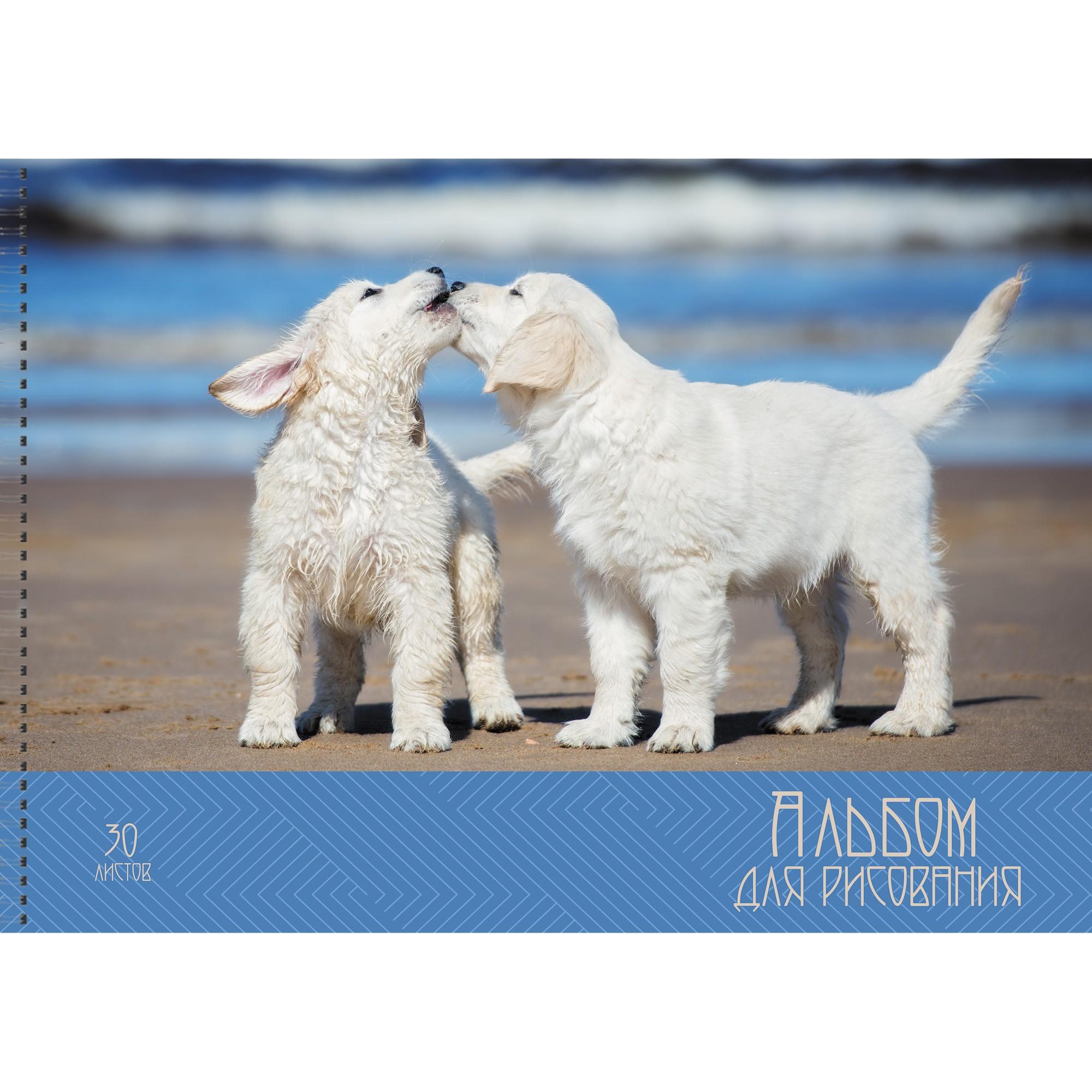 Альбом д/рис 30л спир Счастливые собачки 110г/м2