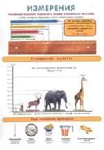 Плакат Доли. Измерения (А4 формат)