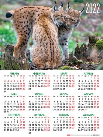 Календарь листовой 2022 Кл2_26042 Дикие кошки