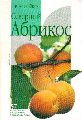Северный абрикос: 57 сортов абрикоса для выращивания в северной зоне России
