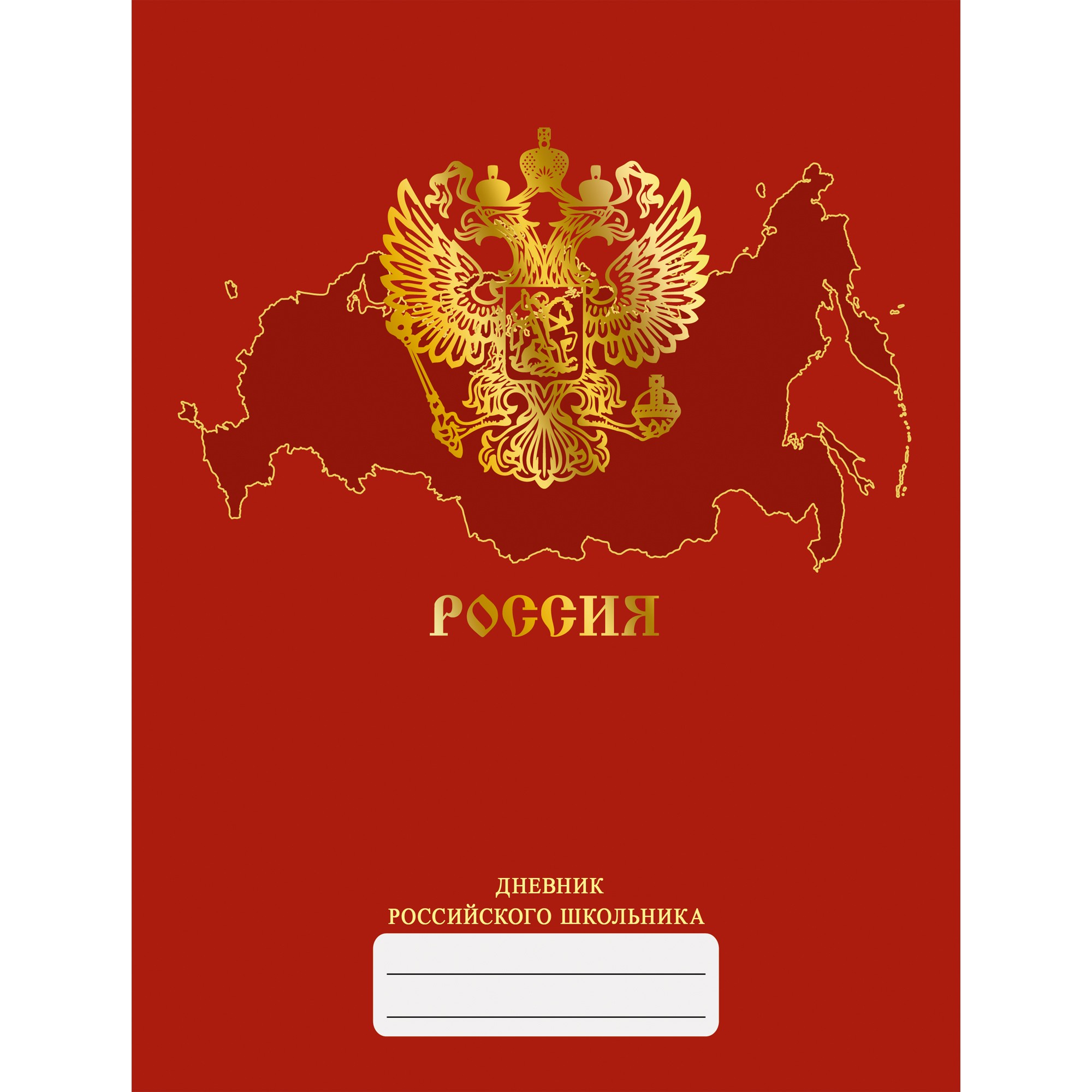 Дневник ст кл Дневник российского школьника. Дизайн 4 (20)