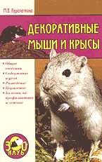 Декоративные мыши и крысы (Зооклуб)
