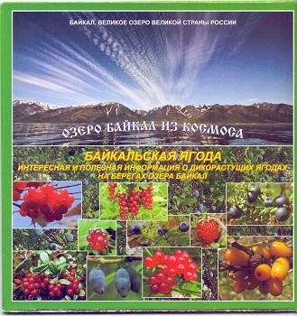 Карта: Озеро Байкал из космоса: Байкальская ягода буклет