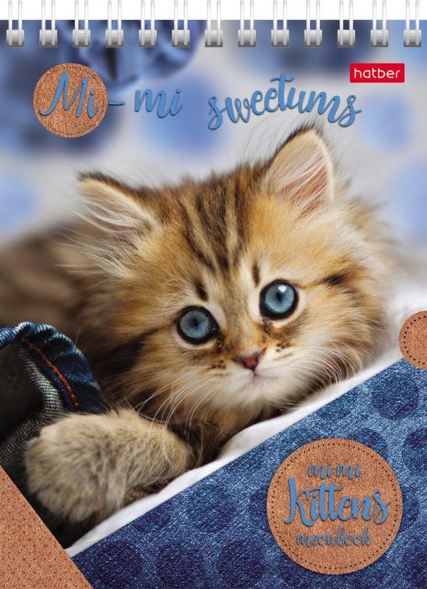 Блокнот А6 40л спир Милые котята