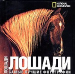Лошади: Самые лучшие фотографии