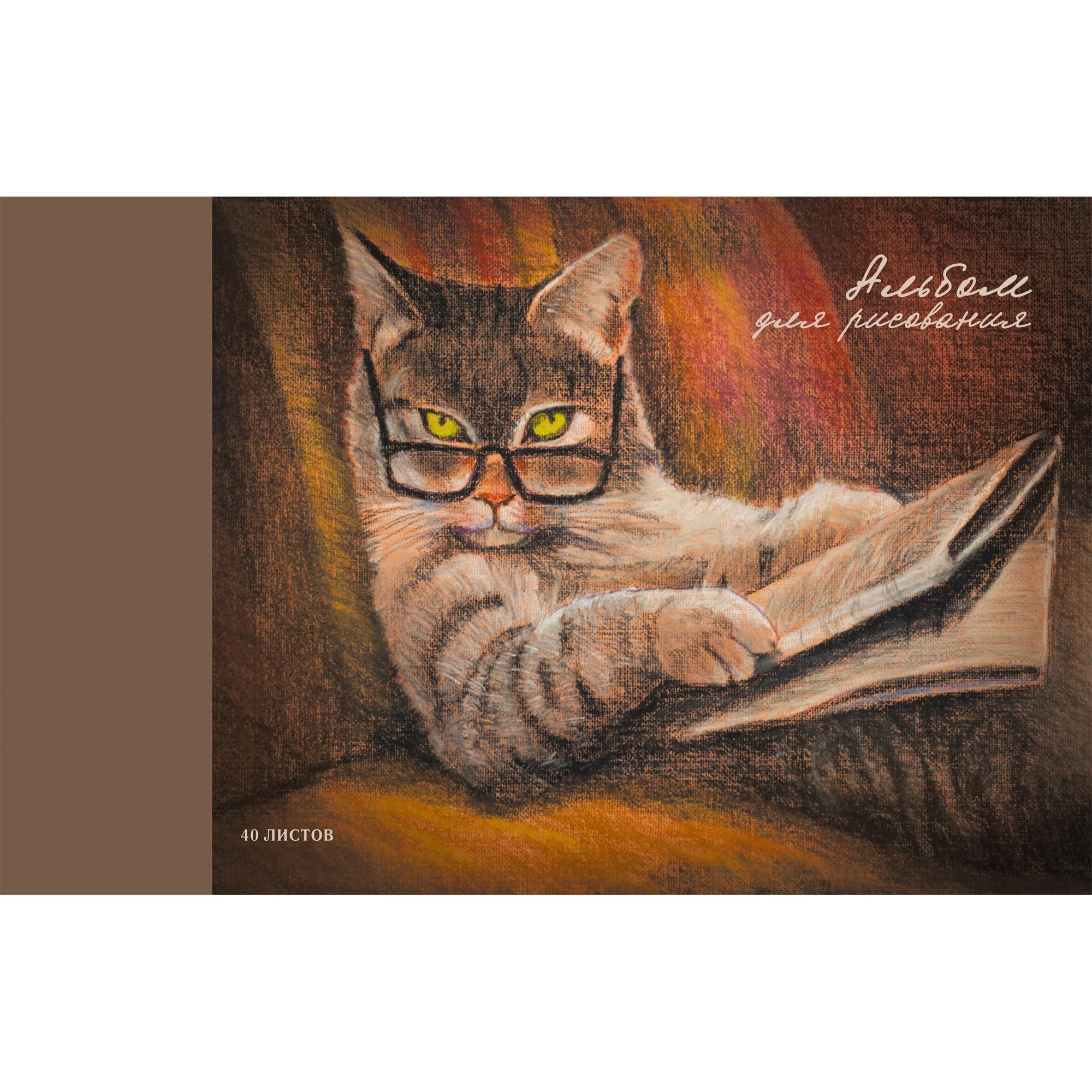 Альбом д/рис 40л Важный кот (склейка) 120г/м2
