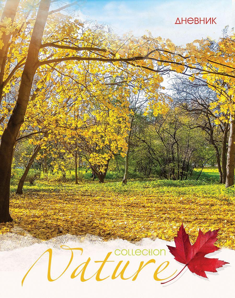Дневник мл кл Золотая осень