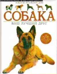 Собака. Ваш лучший друг: Альбом-энциклопедия