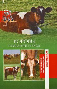 Коровы. Разведение и уход