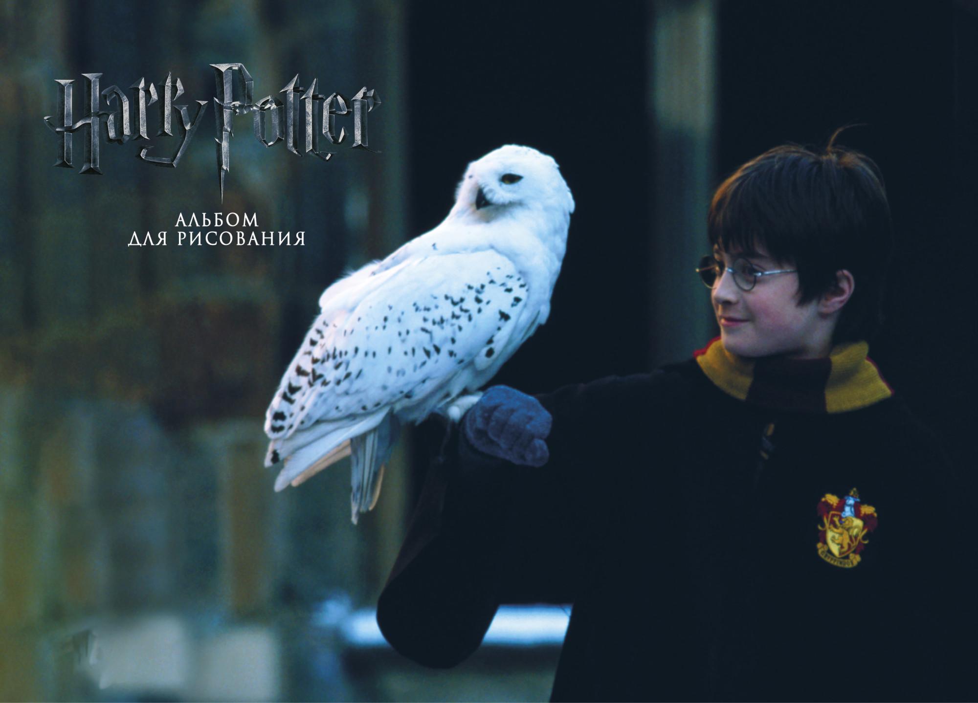 Альбом д/рис 50л спир Гарри Поттер и философский камень: с заданиями