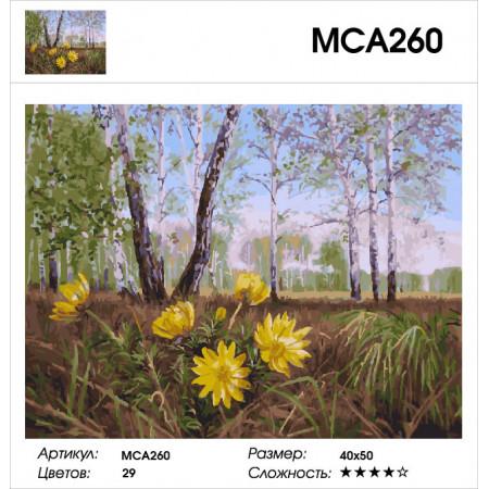 Картина по номерам 40*50 Желтые весенние цветы