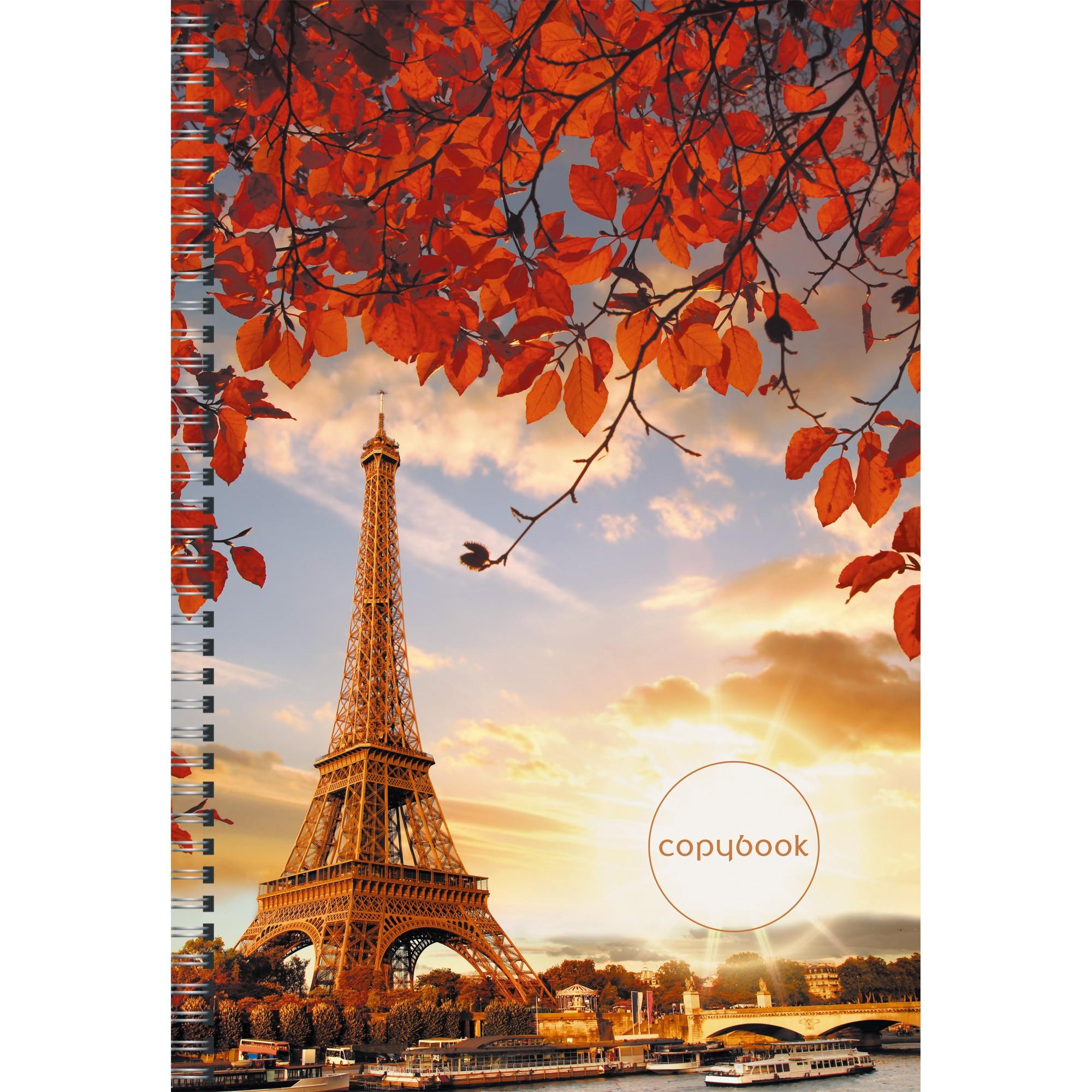 Тетрадь А4 96л кл спир Романтика Парижа