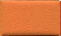 Визитница гориз оранжевая ПВХ