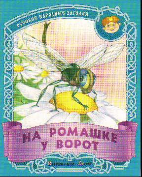 На ромашке у ворот: Русские народные загадки