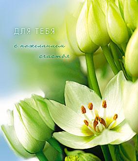 Открытка 0187.016 Для тебя.. сред блест нежные цветы